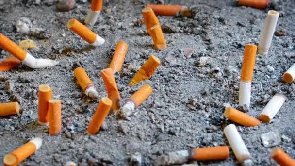 Sok eloltották cigaretta Butts. elvetett a kijelölt gyűjtőedényben