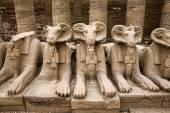 Fotografie Karnak chrám v Luxoru