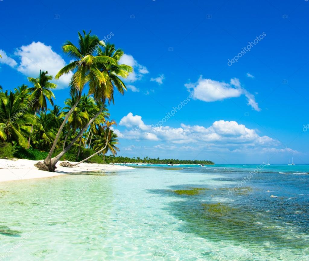 Mare tropicale foto stock pakhnyushchyy 59104307 for Desktop gratis mare