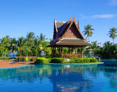 Swimming pool with coconut trees