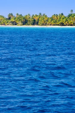 "Картина, постер, плакат, фотообои ""пляж и тропическое море"", артикул 64346495"
