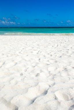Beautiful beach and tropical sea stock vector