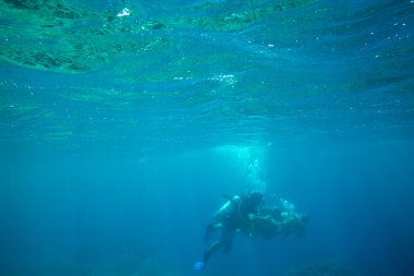 Underwater panorama  with divers