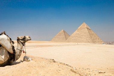 pyramids of Giza in Cairo, Egypt.