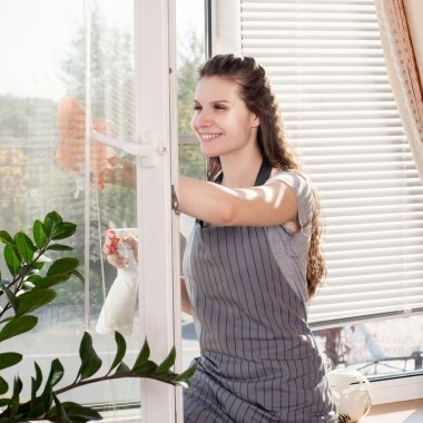 Smiling young brunette cleaning windows using atomizer indoor