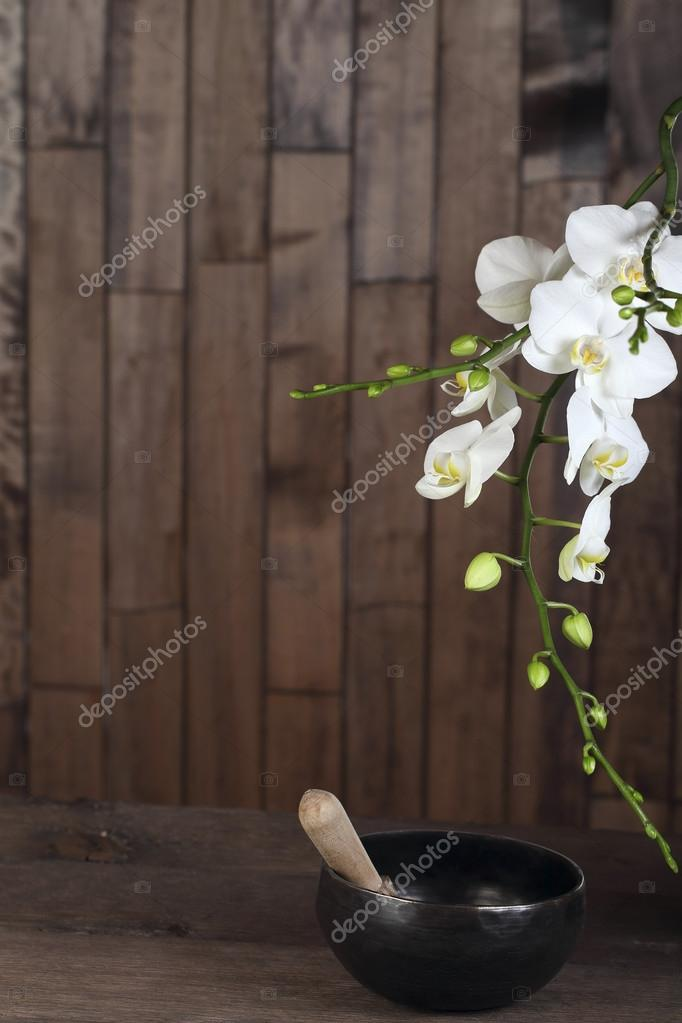 White blossom orchid