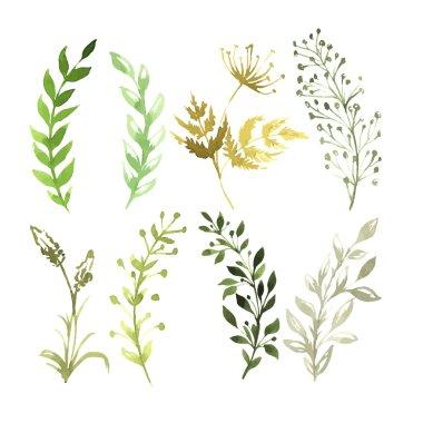 """Картина, постер, плакат, фотообои """"векторный набор цветов, раскрашенных акварелью на белой бумаге. эскиз цветов и трав. векторная акварель """", артикул 74971465"""