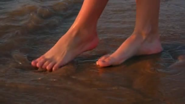 Summer sunset, beach, leisure and body part concept - closeup of woman feet on the sandy beach
