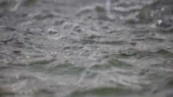 Gocce di pioggia che cadono