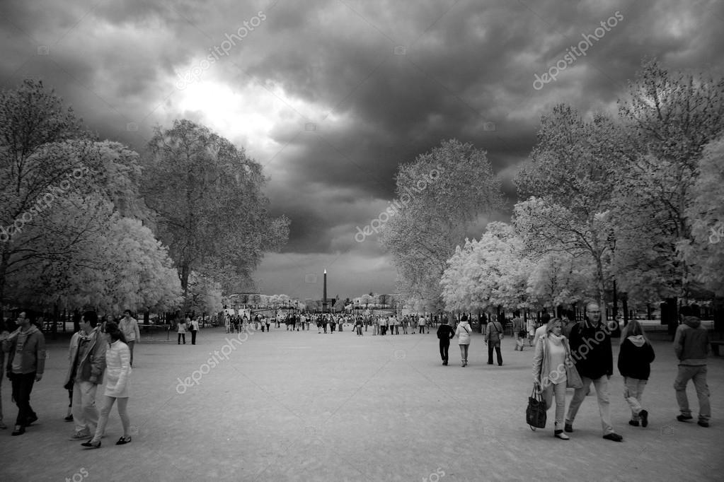 Beroemde Mensen In Parijs.Parijs 24 April Mensen In De Beroemde Tuileries Tuin Op April