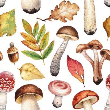 Watercolor illustration of mushrooms.