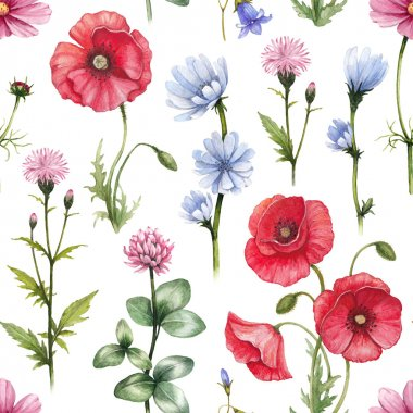 Wild flowers illustrations. Watercolor seamless pattern