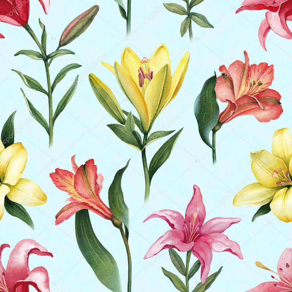 Dessin De Fleurs De Lys Colore Photographie Sashsmir C 115725400