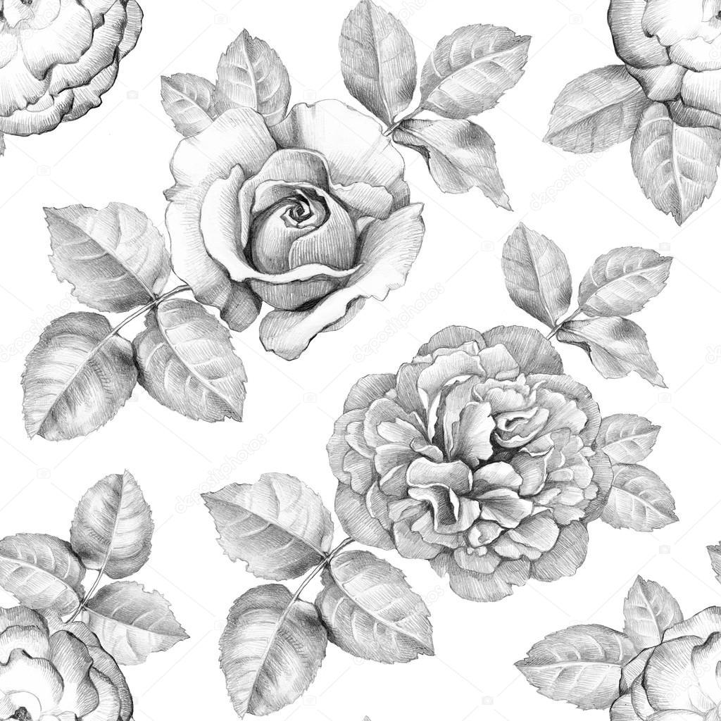 Bleistift Zeichnungen Von Blumen Muster Stockfoto Sashsmir 59480953