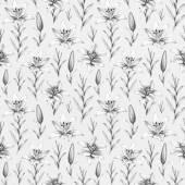 Varrat nélküli mintát ceruzarajzok liliom virág