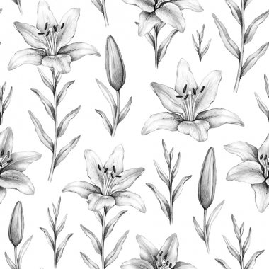 Seamless pattern with pencil drawings of lily flowers