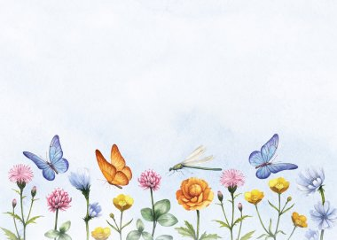 Watercolor wild flowers. Summer background