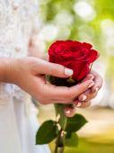 nevěsta s růže kytice