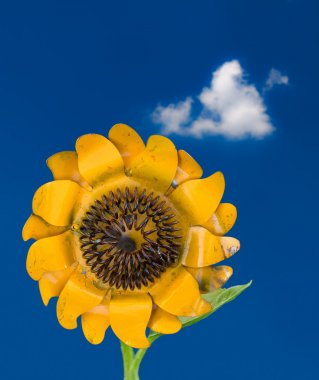 Metal sunflower against blue sky