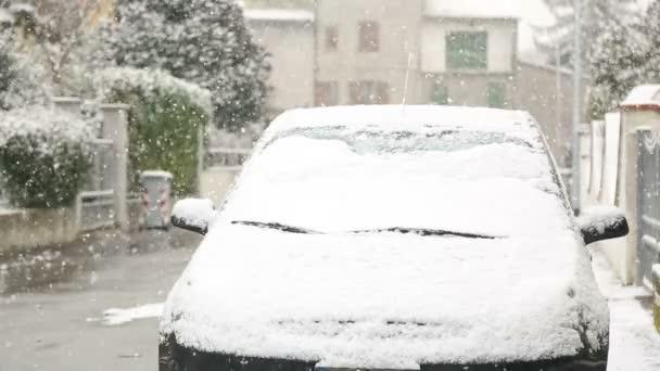 Vozy jsou pokryta sněhem