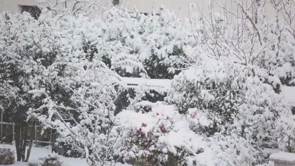 Winterlandschaft mit fallendem Schnee