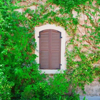 Window in Israel