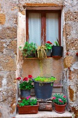 Window in Italy
