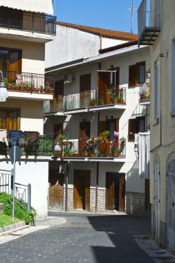 Balconies with Flowers