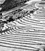 Fotografia colline del Portogallo