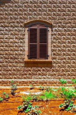 The Open Windows