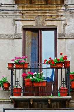 Italian Balcony with Flowers