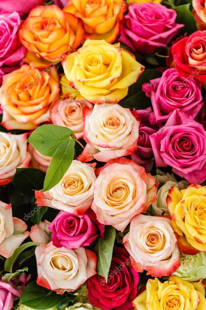 flores color de rosa bonitas — Foto de stock © Shebeko #102320324