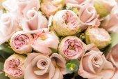 Fényképek gyönyörű szép virágok