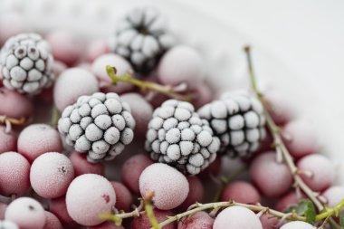 Frozen assortment berries