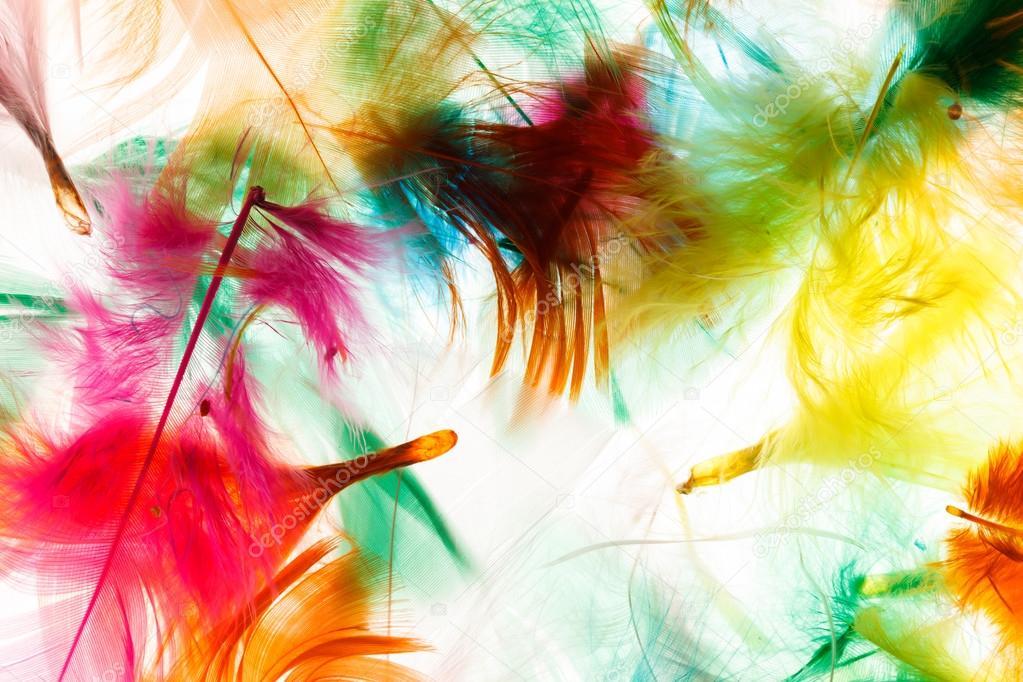 plumas de colores — Foto de stock © Shebeko #55332045