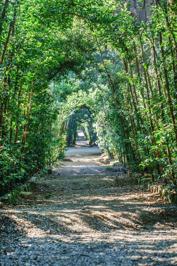 Boboli Gardens. Florence