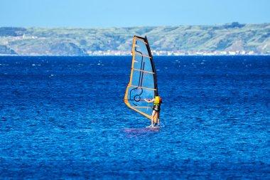 Windsurfer in sunny day