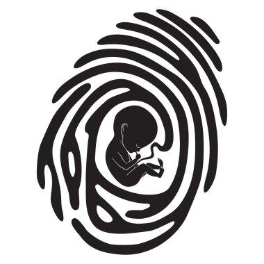 finger print fetus