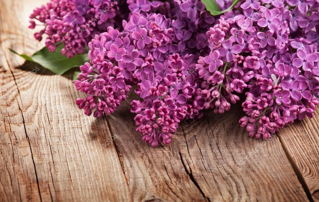 The beautiful lilac on old boards