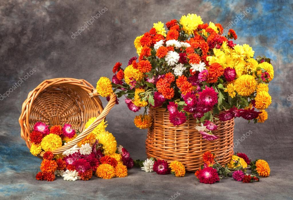 Овощи и фрукты картинки  красивые фото обои на рабочий