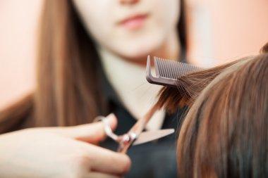 creating hairstyles hairdresser