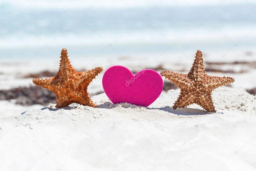 Tropical Valentines Day Romantic Card Stock Photo C Pashapixel