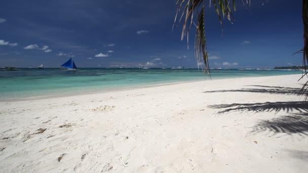 Trópusi tengerpart pálmafákkal és fehér homok