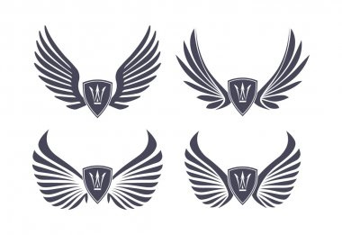 Set of decorative wings