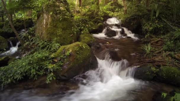 Pohyb vody v potoce, lesní