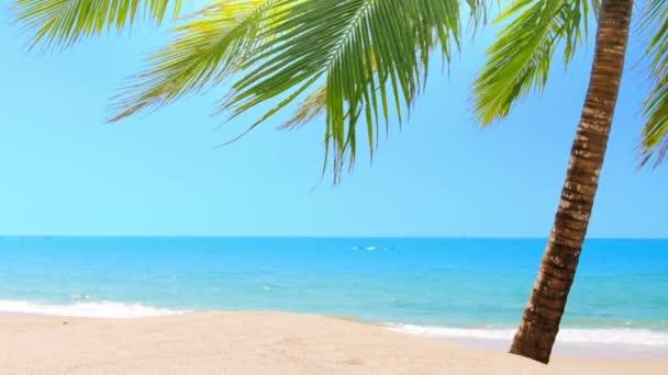 Fa Palm Beach