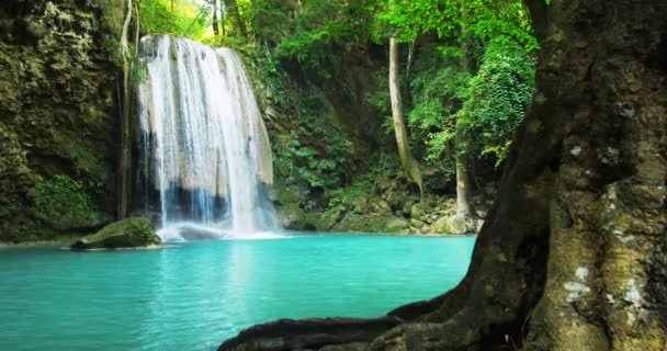 jungle forest with beautiful waterfall