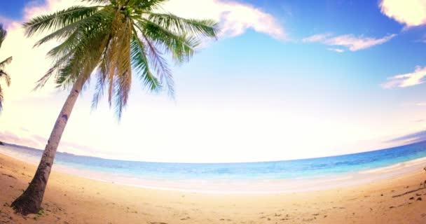 pobřeží moře s Palmou