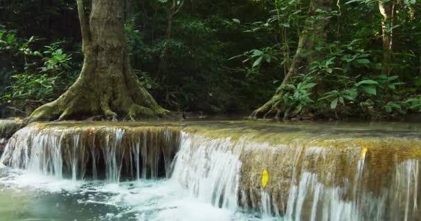 idylická krajina v tropických deštných pralesů