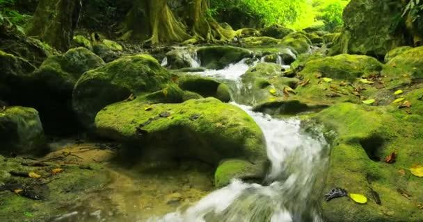 kameny a skály podél horské řeky proud